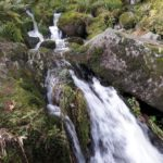 Cascade Vosges